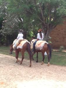 horses my house