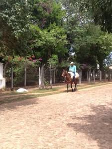 turquoise horse rider